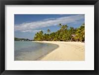 Framed Beach and palm trees,  Malolo Lailai Island, Mamanuca Islands, Fiji