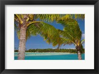 Framed Palm trees and lagoon entrance, Musket Cove Island Resort, Malolo Lailai Island, Mamanuca Islands, Fiji