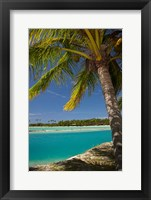 Framed Palm trees and lagoon entrance, Musket Cove Island Resort, Fiji