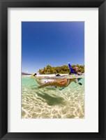 Framed Snorkeling, Beqa Island, Fiji