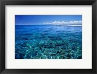 Framed Fiji Islands, Tavarua, coral reef