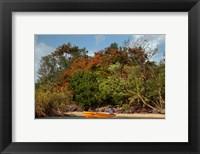 Framed Christmas Tree and Orange Skiff, Turtle Island, Yasawa Islands, Fiji