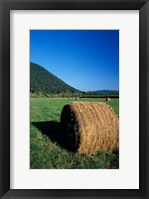 Framed Hay Bales in Litchfield Hills, Connecticut