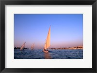 Framed Beautiful Sailboats Riding Along the Nile River, Cairo, Egypt