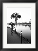 Framed View of the Nile River, Cairo, Egypt