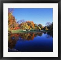 Framed Trees in a golf course, Patterson Club, Fairfield, Connecticut