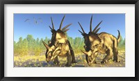 Framed flock of Pterodactylus fly above two Styracosaurus Dinosaurs