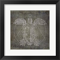 Framed Turtle Geometric Silver