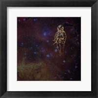Framed Universe Diver