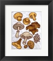 Framed Mushroom Variation