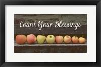 Framed Count Your Blessings Apples
