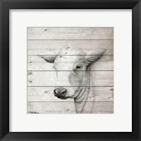 Framed January Cow II