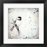 Framed Chickadee