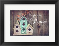 Framed No Place Like Home Bird Houses
