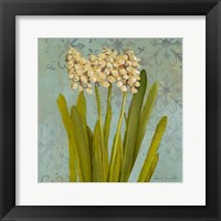 Framed Hyacinth on Teal II