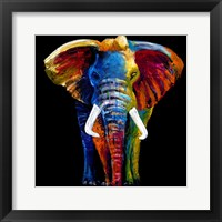 Framed Great elephant