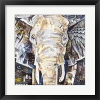 Framed Elephants Gaze