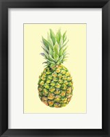 Framed Pinapple