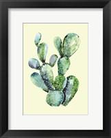 Framed Cactus