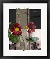 Framed Red Flower