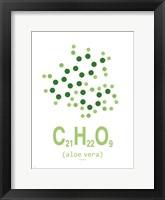 Framed Molecule Aloe vera Clean