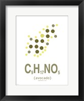 Framed Molecule Avocado Clean