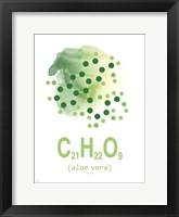 Framed Molecule Aloe Vera Aqua