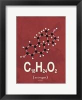 Framed Molecule Estrogene - Red
