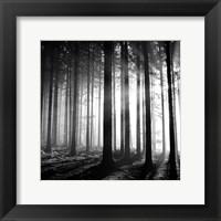 Framed Wood Light