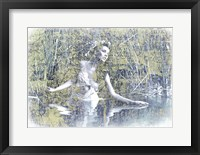 Framed Swan Lake