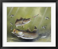 Framed Speckled Trout