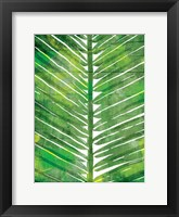 Framed Watercolor Palms Mate