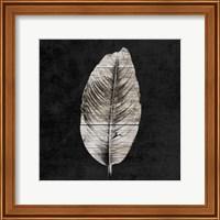 Framed Leaf By The Spirit