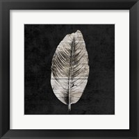 Framed Leaf By The Spirit