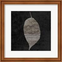 Framed Leaf By The Spirit 2
