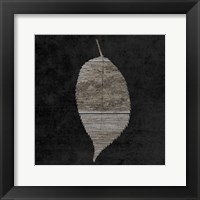 Framed Leaf By The Spirit 2