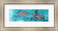 Framed Turtles Together