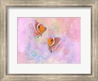 Framed Clownfish Pair