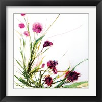 Framed Flowers in the Wind on White