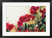 Framed Poppies and Flowers on White