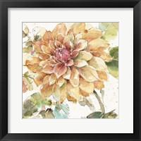 Country Bloom V Framed Print