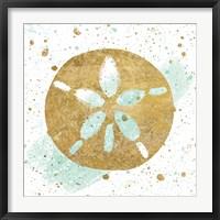 Framed Silver Sea Life Aqua Sanddollar