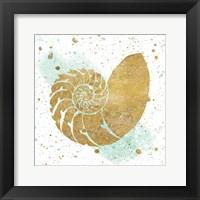 Framed Silver Sea Life Aqua Shell