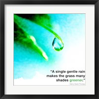Framed Single Gentle Rain - Henry Thoreau Quote (Droplet)