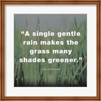 Framed Single Gentle Rain - Henry Thoreau Quote (Dark)