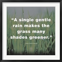 Framed Single Gentle Rain - Henry Thoreau Quote (Dark)