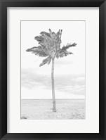 Framed Swaying Palm I
