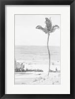 Framed Swaying Palm II