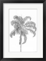 Framed Swaying Palm III