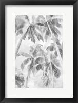 Framed Swaying Palms IV